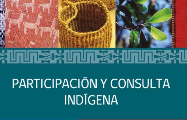 consulta-indigena-portada